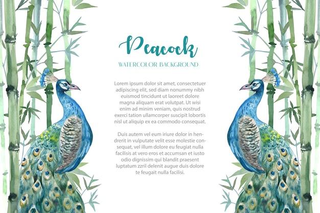 Mooie pauw en bamboe struik aquarel achtergrond.