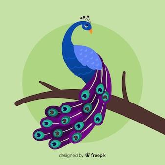 Mooie pauw met plat ontwerp