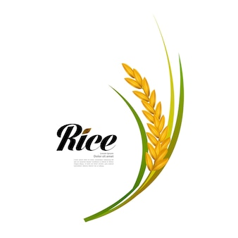 Mooie realistische rijstillustratie