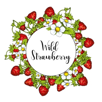 Mooie rijpe aardbeien op de stengels met bladeren