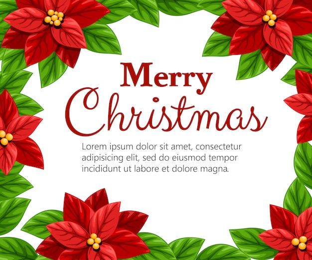 Mooie rode poinsettia bloem en groene bladeren kerst decoratie illustratie op witte achtergrond met plaats voor uw tekst