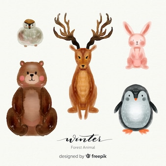 Mooie set van winter bosdieren