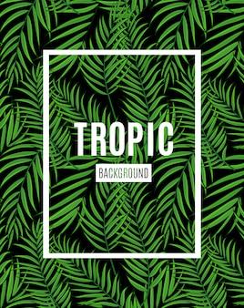 Mooie tropische het silhouetachtergrond van het palmblad