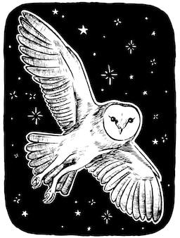 Mooie vliegende uil op sterrennacht. schets van dieren, dieren in het wild, vogels. hand getekend vectorillustratie. vintage stijl tekening voor desig, poster, print, ansichtkaart.