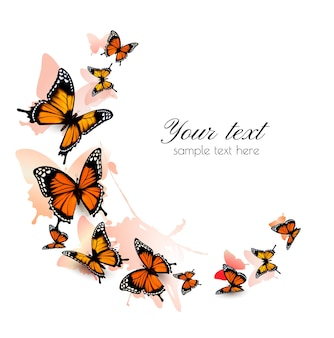 Mooie vlinder achtergrond.