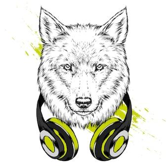 Mooie wolf in hoofdtelefoons
