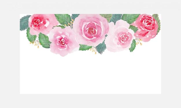 Mooie zachte de bloemwaterverf van toonrozen over witte achtergrond