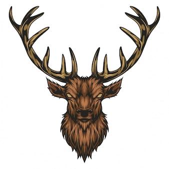Moose hoofd illustratie
