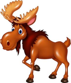 Moose schattige uitdrukking