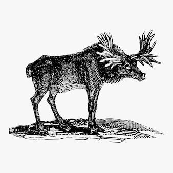 Moose vintage stijl
