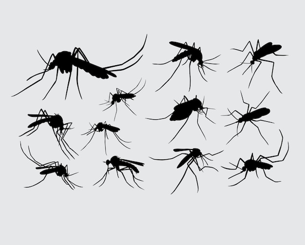 Mug insect dier silhouet