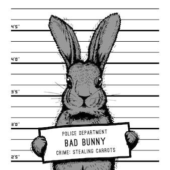 Mugshot konijn