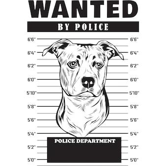 Mugshot van american staffordshire dog met spandoek achter tralies
