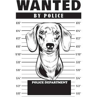 Mugshot van teckelhond met spandoek achter tralies