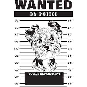 Mugshot van yorkshire terrier dog met spandoek achter de tralies