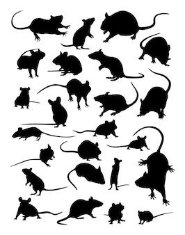 Muis dieren silhouet