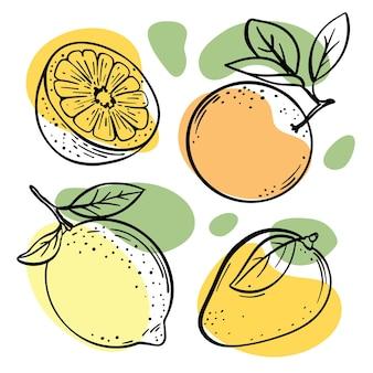 Multifruitschetsen met pasteloranje, gele en groene kleurspattenillustraties