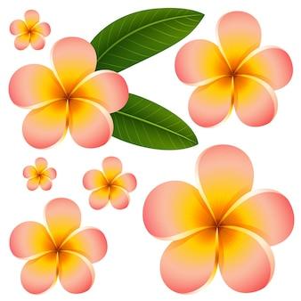 Naadloos achtergrondontwerp met kleurrijke bloemen