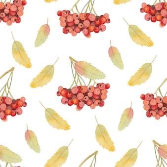 Naadloos aquarel herfstpatroon met lijsterbes en bladeren