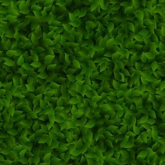 Naadloos groen bladerenpatroon. Premium Vector