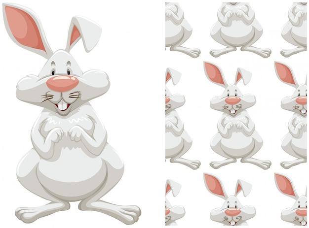 Naadloos konijntjespatroon dat op wit wordt geïsoleerd