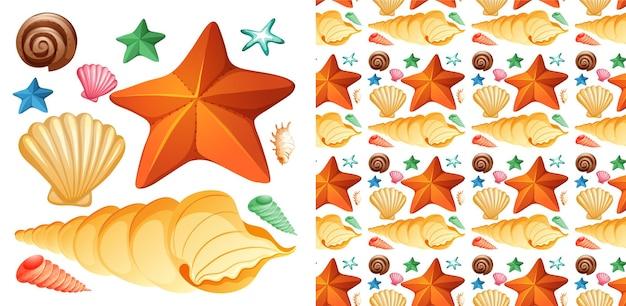 Naadloos ontwerp als achtergrond met geïsoleerde reeks schelpen en zeester