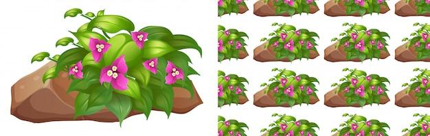 Naadloos ontwerp als achtergrond met roze bloemen op steen