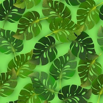 Naadloos patroon met bladeren van wildernis tropische monstera, vectorillustratie.