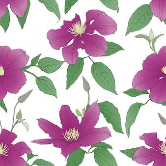 Naadloos patroon met clematissenbloemen.