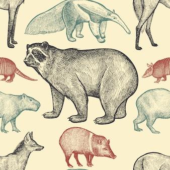 Naadloos patroon met dieren.
