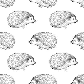 Naadloos patroon met egel.