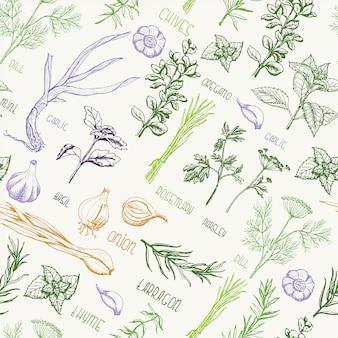 Naadloos patroon met kruiden en specerijen
