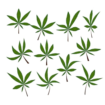 Naadloos patroon met marihuanabladeren. vector illustratie.
