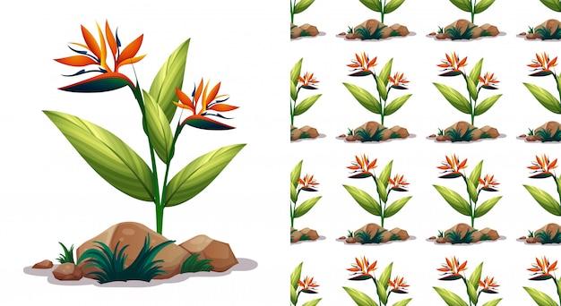 Naadloos patroon met paradijsvogel bloemen