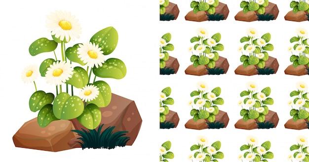 Naadloos patroon met witte bloemen op rotsen