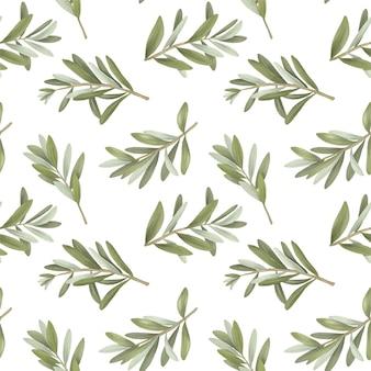 Naadloos patroon van geïsoleerde groene olijfboomtakken