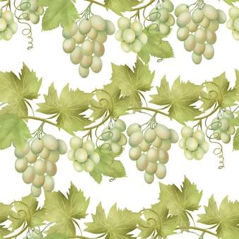 Naadloos patroon van groene wijnstokken