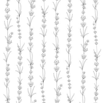 Naadloos patroon van lavendel.