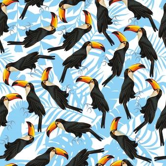 Naadloos patroonbehang toucan wit blauw