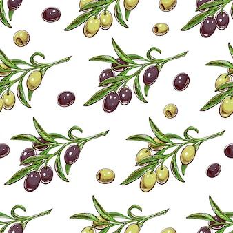 Naadloze achtergrond met olijftakken. handgetekende illustratie