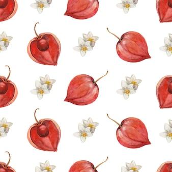Naadloze aquarel patroon met fruit en bloemen van physalis