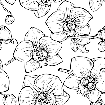 Naadloze bloemmotief met hand getrokken orchideebloemen