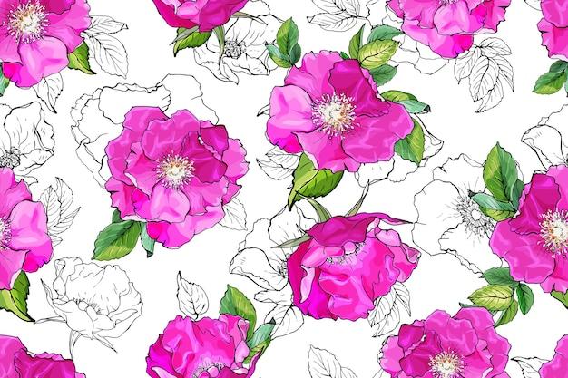 Naadloze bloemmotief met roze bloemen wilde rozen.