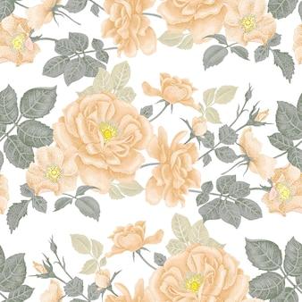 Naadloze bloemmotief met rozen.