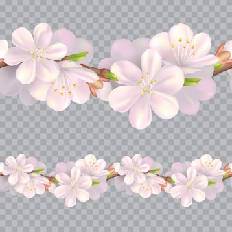 Naadloze bloesem grens. zacht roze herhaalbaar bloempatroon. realistische lente illustratie. horizontale bloei ontwerp achtergrond.
