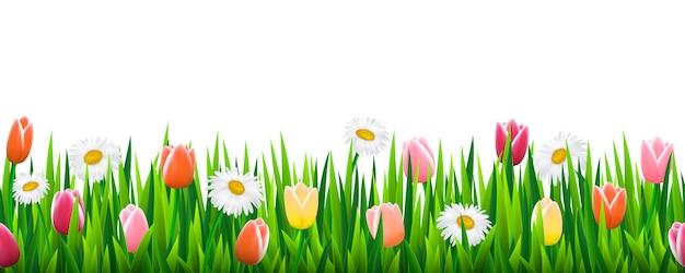 Naadloze grens met gras en bloemen