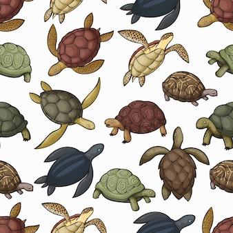 Naadloze het patroonachtergrond van zeeschildpaddieren
