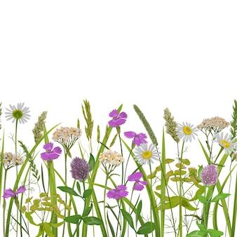 Naadloze horizonrand met herhaalbehang van kruiden en veldbloemen voor textielprints