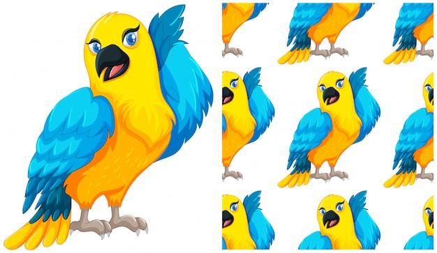 Naadloze papegaai geïsoleerd op wit