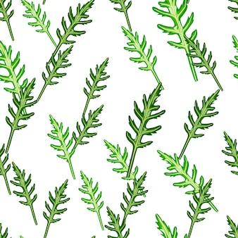Naadloze patroon bos rucola salade op witte achtergrond. eenvoudig ornament met sla.